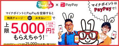マイナポイントにpaypayを登録すると上限5000円もらえちゃう!